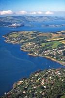 Otago Harbor Dunedin New Zealand