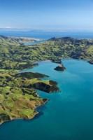 Akaroa Harbor, Canterbury, South Island, New Zealand by David Wall - various sizes