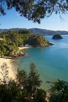 Breaker Bay, Honeymoon Bay, South Island, New Zealand by David Wall - various sizes