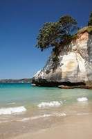 Cathedral Cove, Coromandel Peninsula, North Island, New Zealand by David Wall - various sizes