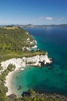 Coastline, Cathedral Cove, North Island, New Zealand by David Wall - various sizes