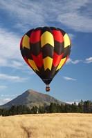Hot Air Balloon, Wanaka, South Island, New Zealand Fine Art Print