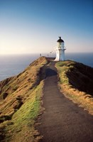 Lighthouse of Cape Reigna, Northland, New Zealand by David Wall - various sizes