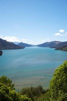 Mahakipawa Arm, South Island, New Zealand by David Wall - various sizes