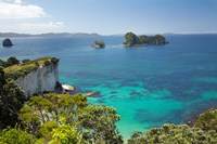 Stingray Bay, Cathedral Cove, North Island, New Zealand by David Wall - various sizes