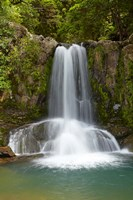 Waiau Waterfall near 309 Road, Coromandel Peninsula, North Island, New Zealand Fine Art Print