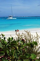 Swimming the waters of Prickly Pear Island with Festiva Sailing Vacations by Lynn Seldon - various sizes