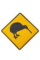 Kiwi Warning Sign, New Zealand by David Wall - various sizes, FulcrumGallery.com brand