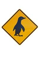 Penguin Warning Sign, New Zealand Fine Art Print