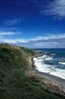 New Zealand, South Island, Cape Foulwind coastline by Walter Bibikow - various sizes, FulcrumGallery.com brand