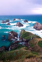 New Zealand, South Island, Nugget Point Fine Art Print