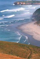 New Zealand, South Island, Otago Coast Fine Art Print