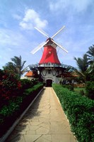 Windmill, Famous Old Mill Restaurant in Aruba Fine Art Print