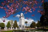 Memorial Clock Tower, Seymour Square, Marlborough, South Island, New Zealand (horizontal) by David Wall - various sizes