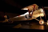 Nieuport 24 war plane, Marlborough, New Zealand by David Wall - various sizes - $37.49