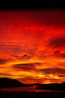Sunrise, Otago Harbor, Dunedin, New Zealand by David Wall - various sizes