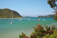 Yachts moored in Waipiro Bay, North Island, New Zealand Fine Art Print