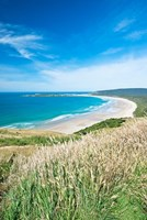 New Zealand, South Island, Catlins, Tautuku Bay by Rob Tilley - various sizes