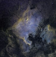 The North America Nebula and the Pelican Nebula Fine Art Print