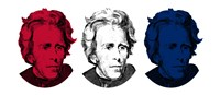 Andrew Jackson in Red, White and Blue Fine Art Print