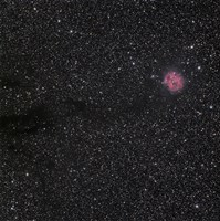 Cocoon Nebula by Phillip Jones - various sizes