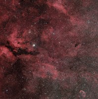 The Sadr Region with the Crescent Nebula Fine Art Print