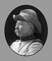Colonel Theodore Roosevelt (side profile) by John Parrot - various sizes, FulcrumGallery.com brand