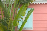 Palm and Pineapple Shutters Detail, Great Abaco Island, Bahamas by Walter Bibikow - various sizes - $40.99