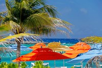 Umbrellas and Shade at Castaway Cay, Bahamas, Caribbean Fine Art Print