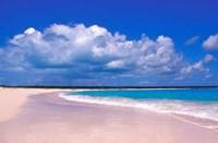 Pink Sand Beach, Harbour Island, Bahamas Fine Art Print