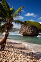 Bathsheba Rock, Barbados, West Indies Fine Art Print