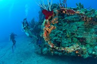 Wreck of the RMS Rhone, Coast of Salt Island, near Tortola, British Virgin Islands by Stuart Westmorland - various sizes