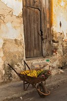 Bananas in wheelbarrow, Havana, Cuba by Adam Jones - various sizes