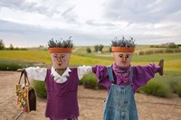 Scarecrows at a lavendar farm in SE Washington Fine Art Print