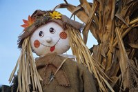 Scarecrow and Dead Corn Husks, Carnation, Washington Fine Art Print