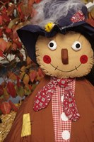 Stuffed Scarecrow on Display at Halloween, Washington Fine Art Print