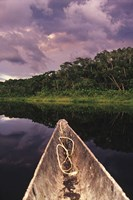 Paddling a dugout canoe on Lake Anangucocha, Yasuni National Park, Amazon basin, Ecuador Fine Art Print