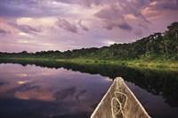 Paddling a dugout canoe, Amazon basin, Ecuador Fine Art Print