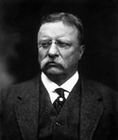 Portrait of Theodore Roosevelt Fine Art Print