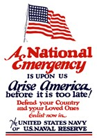 A National emergency, Arise America by John Parrot - various sizes, FulcrumGallery.com brand