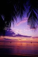Sunset on the beach, Negril, Jamaica, Caribbean Fine Art Print