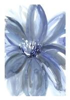 Water Petals Fine Art Print