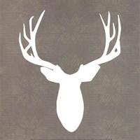 Buck II Fine Art Print