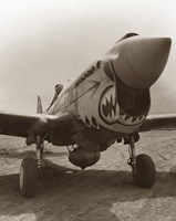 Vintage World War Two P-40 Warhawk by John Parrot - various sizes