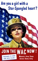 The Women's Army Corps Fine Art Print
