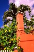 Charlotte Amalie St Thomas Caribbean