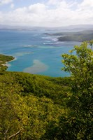 MARTINIQUE, West Indies, Baie du Tresor Fine Art Print