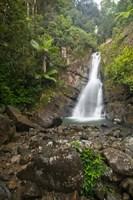 Puerto Rico, El Yunque, La Mina Waterfalls Fine Art Print