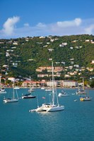 Harbor, St Thomas, US Virgin Islands Fine Art Print