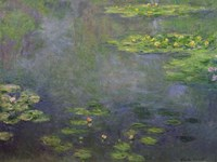 Waterlilies (green with blue) Fine Art Print